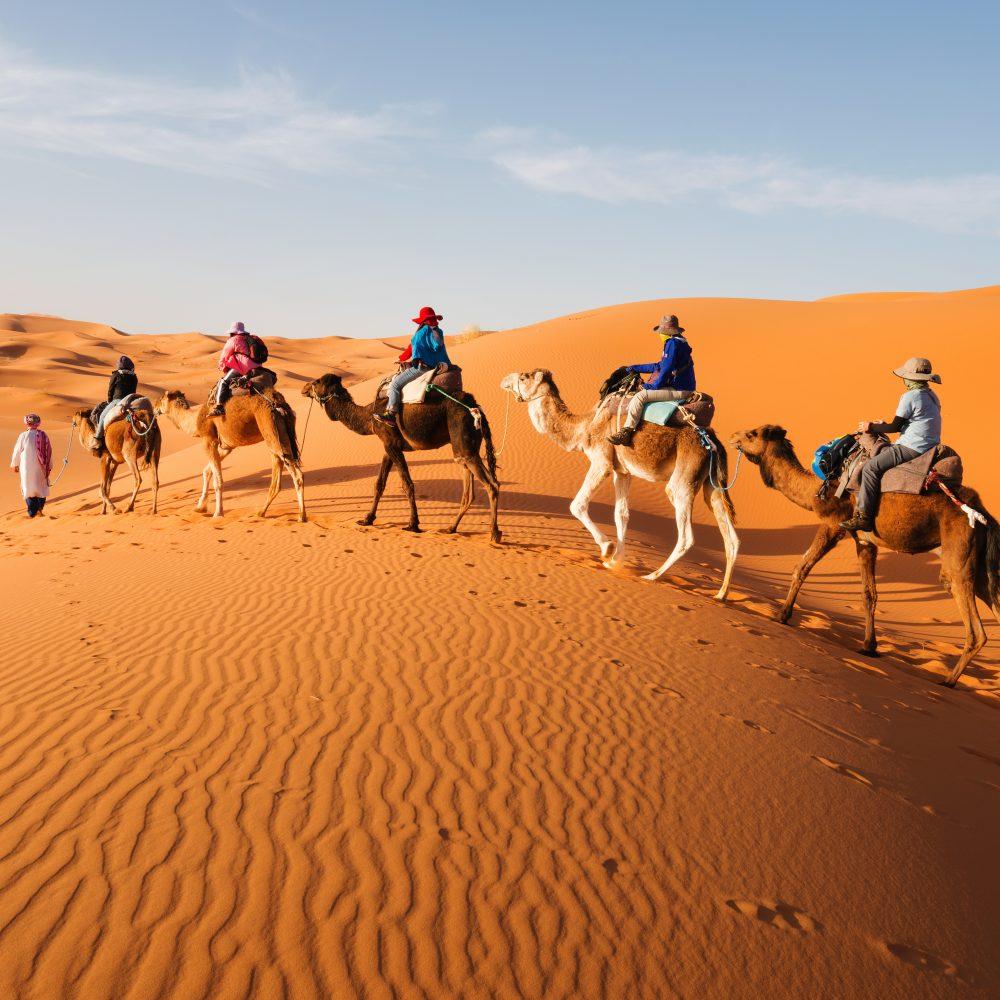 Nordafrika und Jordanien